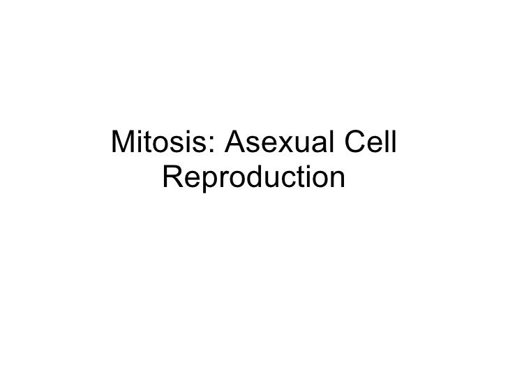 Mitosis: Asexual Cell Reproduction