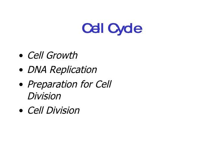 Cell Cycle <ul><li>Cell Growth </li></ul><ul><li>DNA Replication </li></ul><ul><li>Preparation for Cell Division </li></ul...