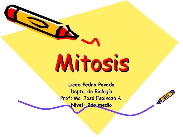 Mitosis Liceo Pedro Poveda Depto. de Biología Prof: Ma. José Espinoza A. Nivel: 2do medio