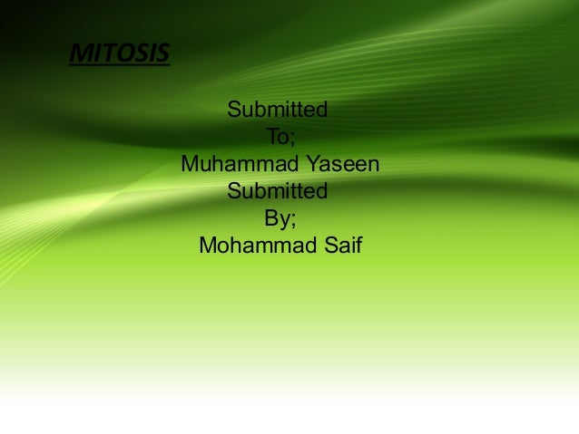 MITOSIS Submitted To; Muhammad Yaseen Submitted By; Mohammad Saif