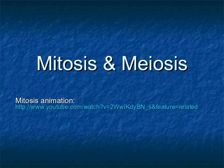 Mitosis & Meiosis Mitosis animation:   http://www.youtube.com/watch?v=2WwIKdyBN_s&feature=related