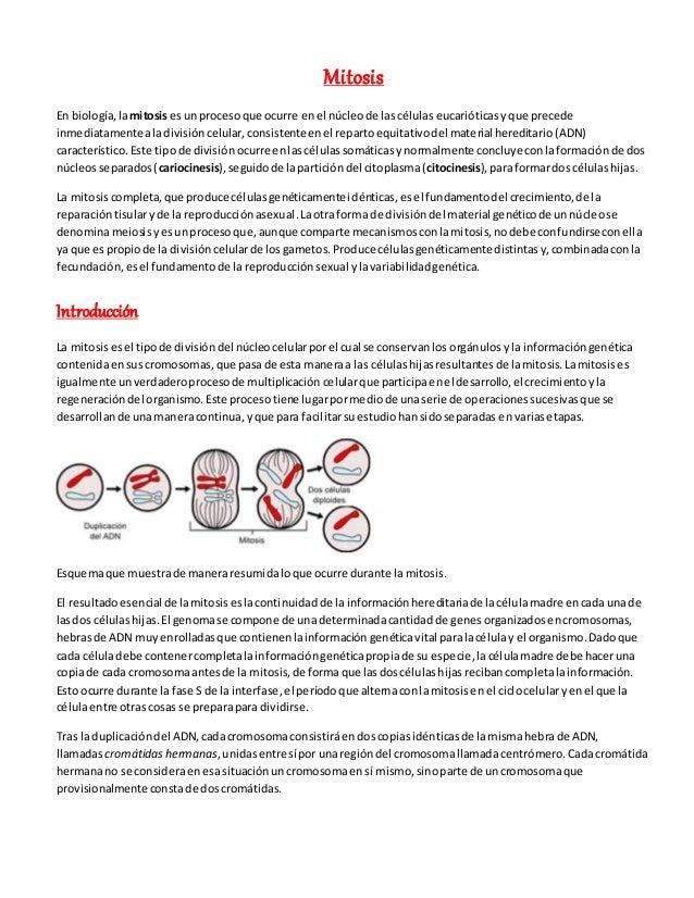 Mitosis En biología,lamitosises unprocesoque ocurre enel núcleode lascélulas eucarióticas yque precede inmediatamentealadi...