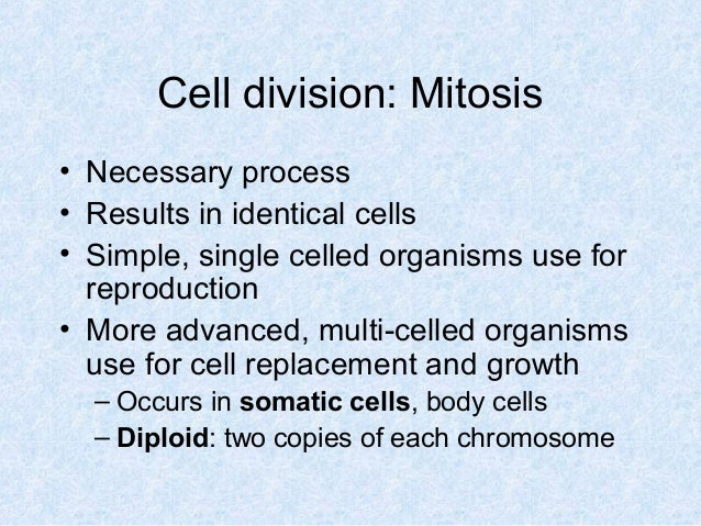 Cell division: Mitosis • Necessary process • Results in identical cells • Simple, single celled organisms use for reproduc...