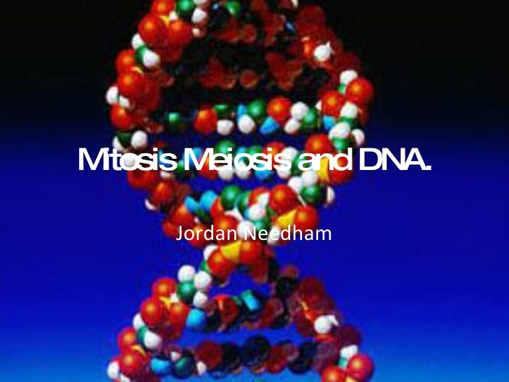 Mitosis Meiosis and DNA. Jordan Needham