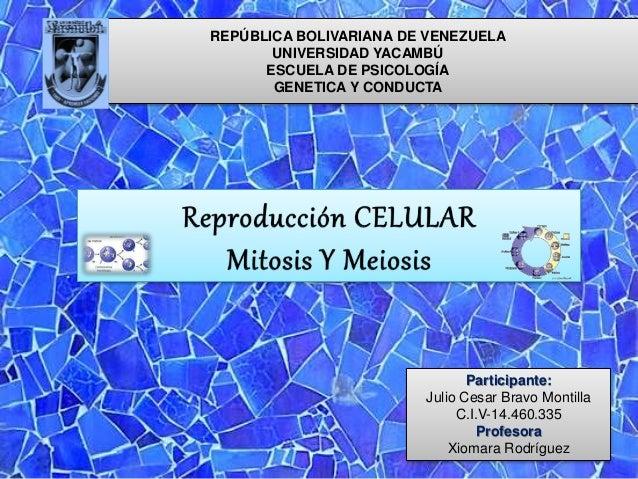 REPÚBLICA BOLIVARIANA DE VENEZUELA UNIVERSIDAD YACAMBÚ ESCUELA DE PSICOLOGÍA GENETICA Y CONDUCTA Participante: Julio Cesar...
