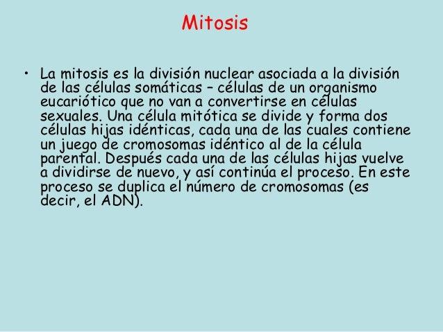 Mitosis• La mitosis es la división nuclear asociada a la división  de las células somáticas – células de un organismo  euc...