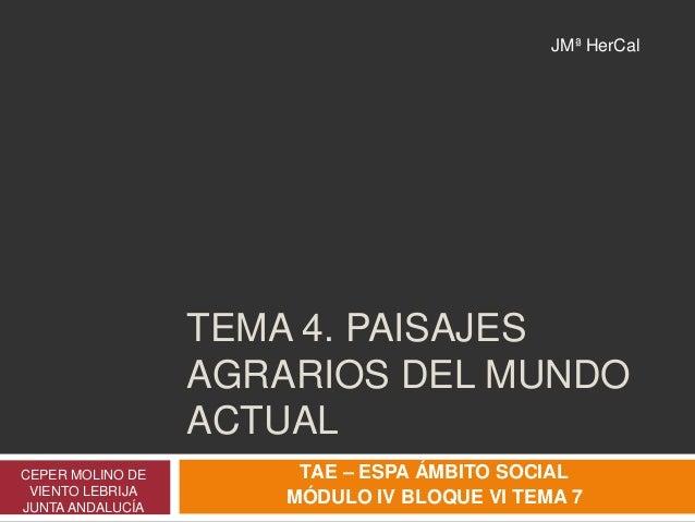 TEMA 4. PAISAJES AGRARIOS DEL MUNDO ACTUAL CEPER MOLINO DE VIENTO LEBRIJA JUNTA ANDALUCÍA TAE – ESPA ÁMBITO SOCIAL MÓDULO ...
