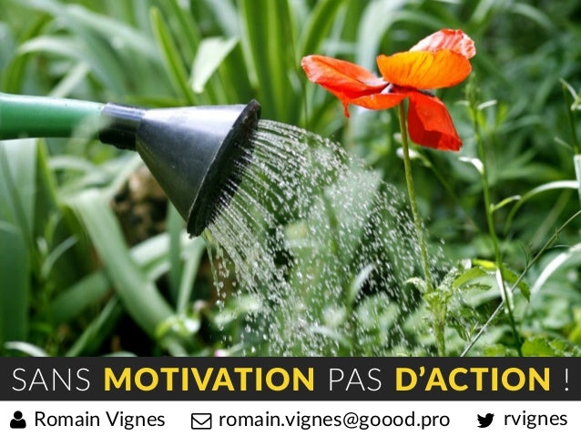 SANS MOTIVATION PAS D'ACTION ! rvignesromain.vignes@goood.proRomain Vignes