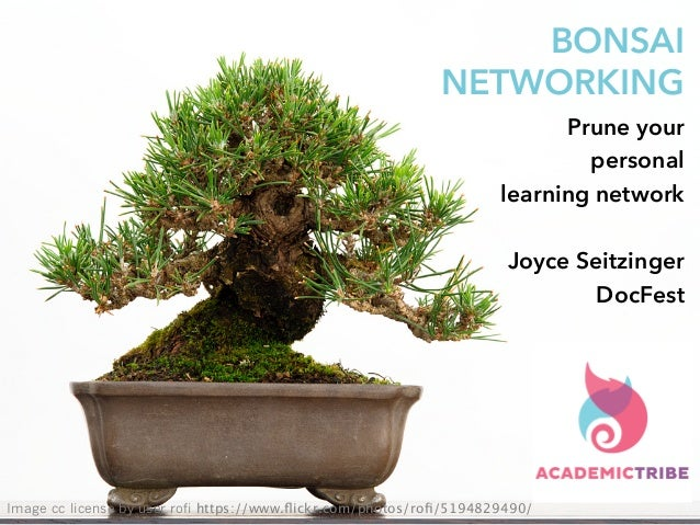 BONSAI NETWORKING Prune your personal learning network Joyce Seitzinger DocFest Image cc license by user rofi https://www....