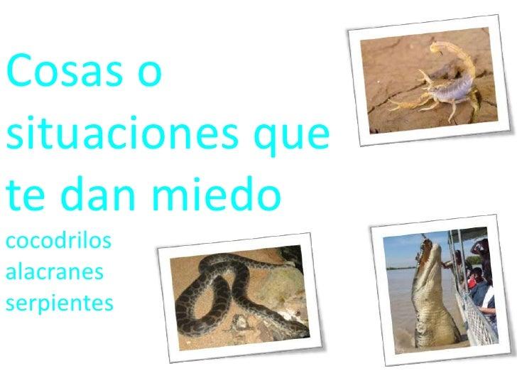 Cosas o situaciones que te dan miedo    cocodrilos                                       alacranes                        ...