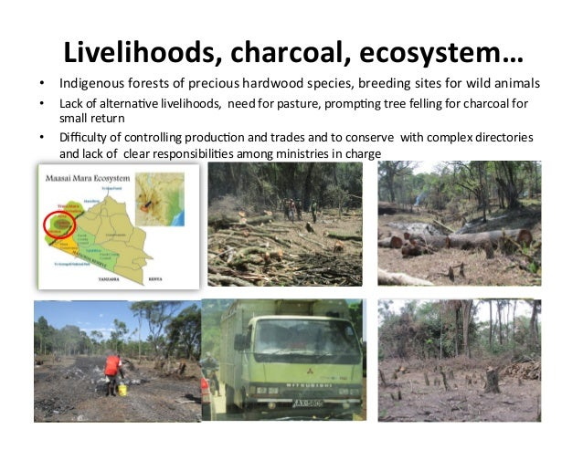 Livelihoods,	   charcoal,	   ecosystem…	    •  Indigenous	   forests	   of	   precious	   hardwood	   species,	   breeding...