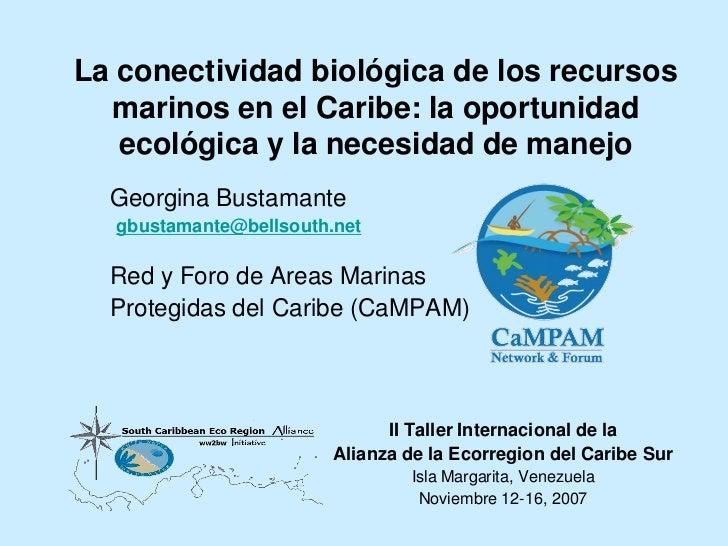 La conectividad biológica de los recursos  marinos en el Caribe: la oportunidad   ecológica y la necesidad de manejo  Geor...