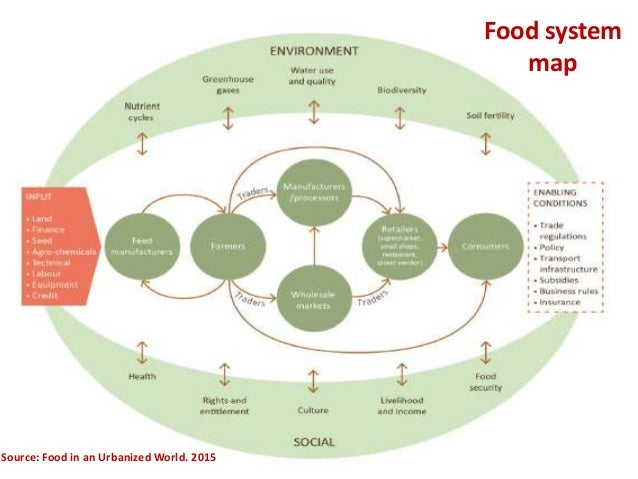 nutrition food security Assuring food and nutrition security is generally regarded as one of the key global challenges for the 21st century population growth, climate and environmental change and technology development will all interact to determine how our various nations will assure an adequate food supply to the citizens of the americas.