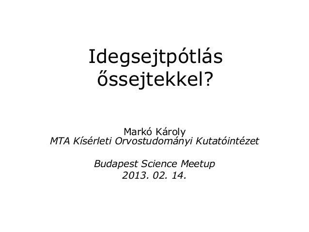 Idegsejtpótlásőssejtekkel?Markó KárolyMTA Kísérleti Orvostudományi KutatóintézetBudapest Science Meetup2013. 02. 14.