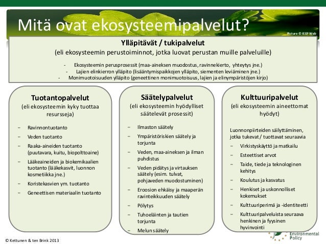 Ekosysteemipalvelut