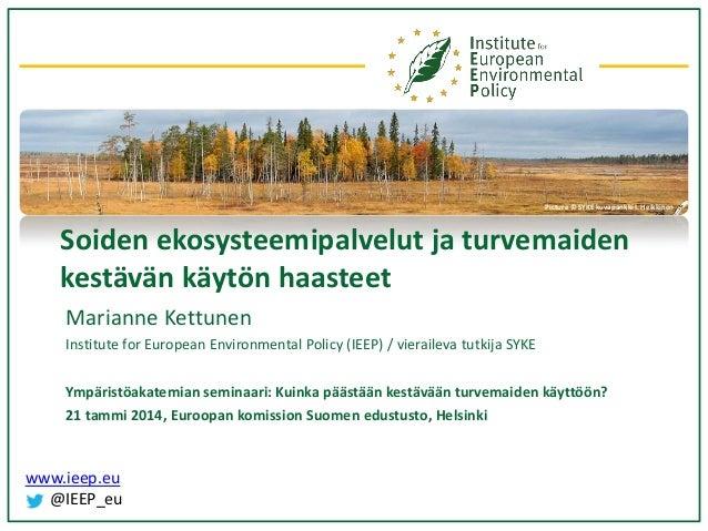 Picture © SYKE kuvapankki I. Heikkinen  Soiden ekosysteemipalvelut ja turvemaiden kestävän käytön haasteet Marianne Kettun...