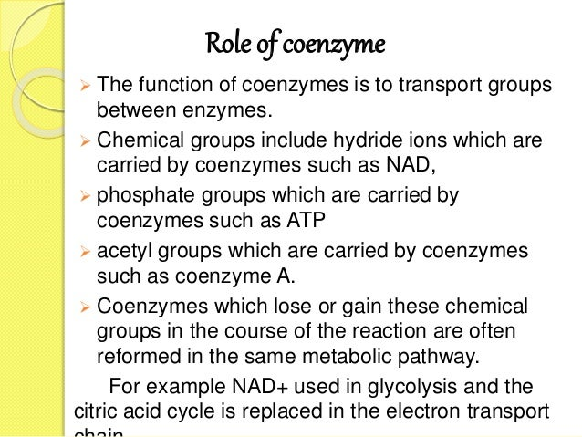 Role of coenzyme  The function of coenzymes is to transport groups between enzymes.  Chemical groups include hydride ion...