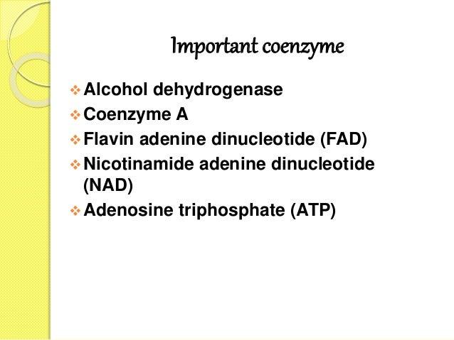 Important coenzyme Alcohol dehydrogenase Coenzyme A Flavin adenine dinucleotide (FAD) Nicotinamide adenine dinucleotid...