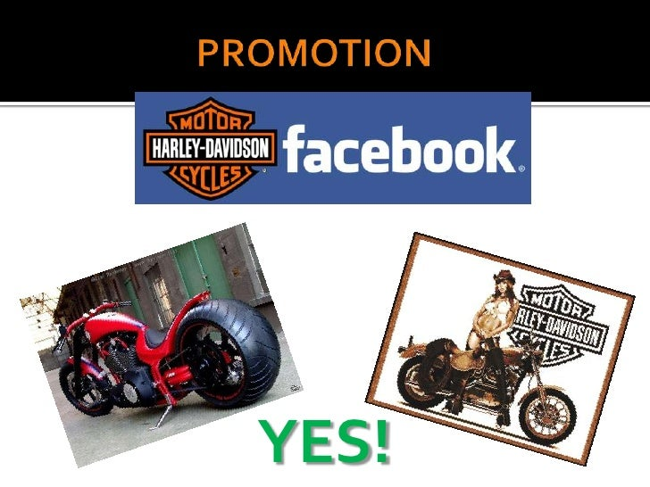 marketing plan harley davidson motorcycles As aging riders hang up their leathers, harley-davidson and honda pin   pacheco traced one of the first rebels on the market to a dealership  if all goes  as planned, these little rigs will help companies like harley-davidson.