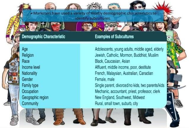 culture and subculture in consumer behaviour pdf