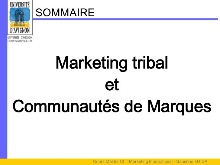 SOMMAIRE    Marketing tribal          etCommunautés de Marques         Cours Master CI - Marketing International - Sandrin...