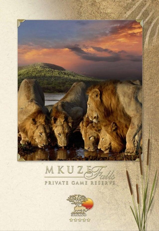 Mkuze brochure