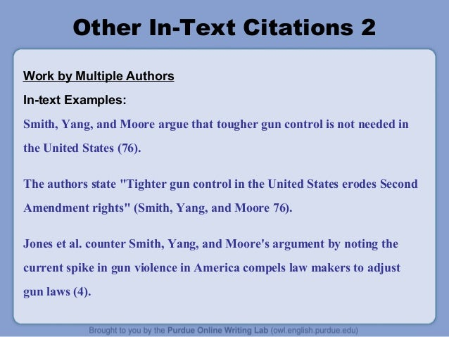 second amendment essay