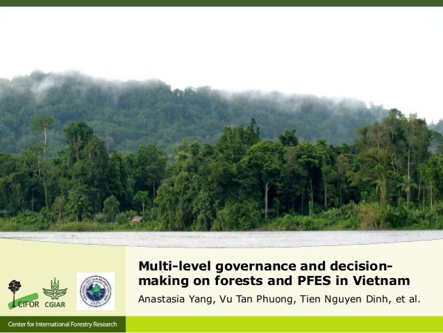 Multi-level governance and decision- making on forests and PFES in Vietnam Anastasia Yang, Vu Tan Phuong, Tien Nguyen Dinh...