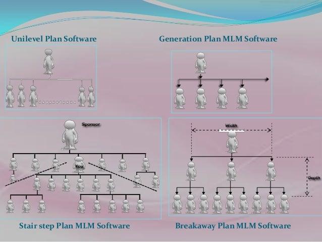 MLM Project website development as per plan