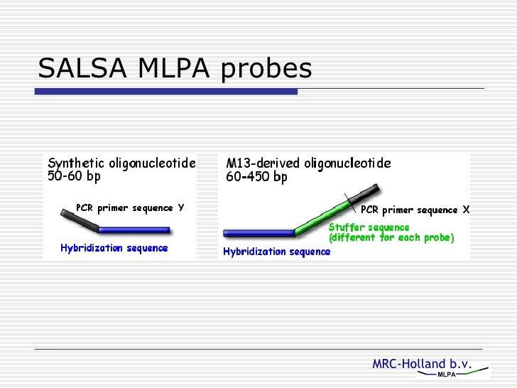 salsa mlpa probes 7 hybridysation ul li the mlpa probemix