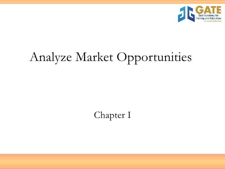Analyze Market Opportunities  Chapter I