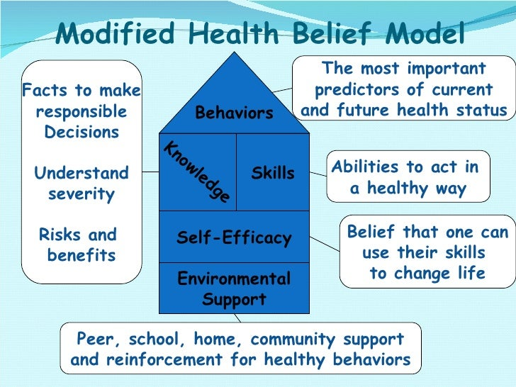 Modified Health Belief Model Skills Self-Efficacy Environmental Support Abilities to act in  a healthy way Belief that one...