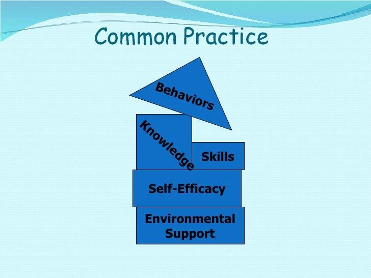 Skills Self-Efficacy Environmental Support Behaviors Knowledge