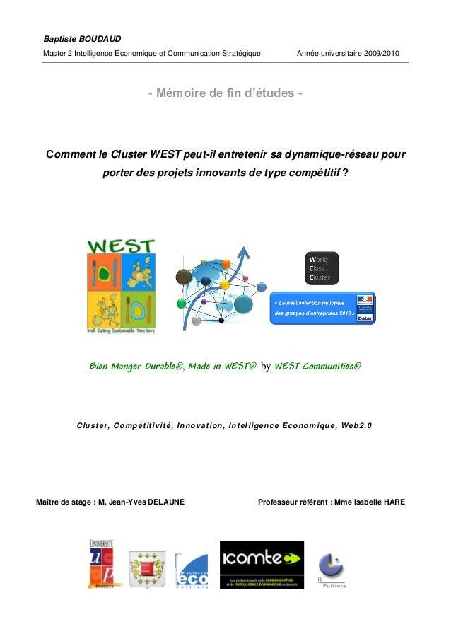 Baptiste BOUDAUD Master 2 Intelligence Economique et Communication Stratégique                 Année universitaire 2009/20...