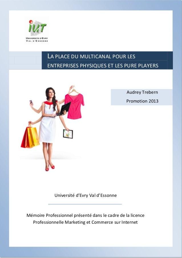 LA PLACE DU MULTICANAL POUR LES ENTREPRISES PHYSIQUES ET LES PURE PLAYERS  Audrey Trebern Promotion 2013  Université d'Evr...