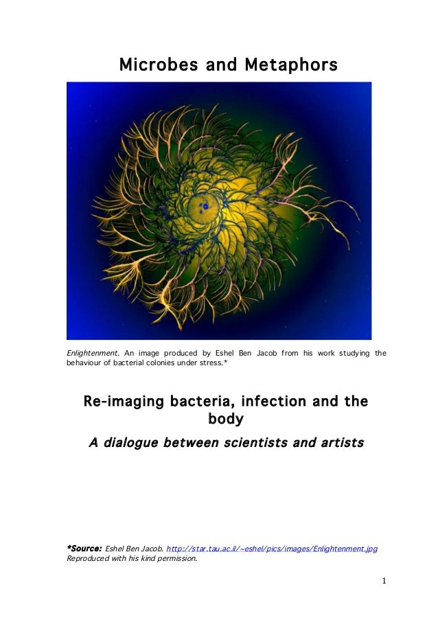 Microbes and Metaphors  Enlightenment. An image produced by Eshel Ben Jacob from his work studying the behaviour of bacter...