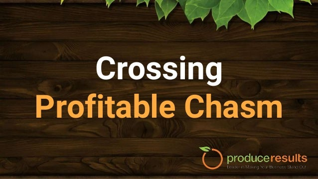 """Profitable Chasm ● The optimum amount which your customers need to spend with you are leaving a """"hidden"""" $1,429,205 revenu..."""
