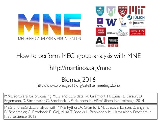 How to perform MEG group analysis with MNE MNE software for processing MEG and EEG data, A. Gramfort, M. Luessi, E. Larson...
