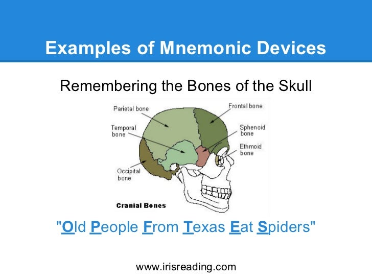how to improve your memory: mnemonic devices, Human Body