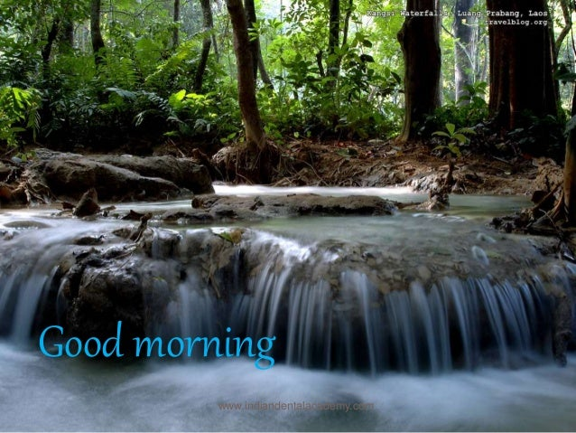 Good morning www.indiandentalacademy.com