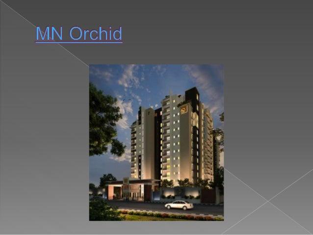 Mn orchid Slide 2