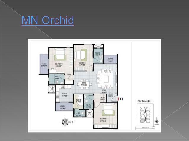 Mn orchid Slide 3