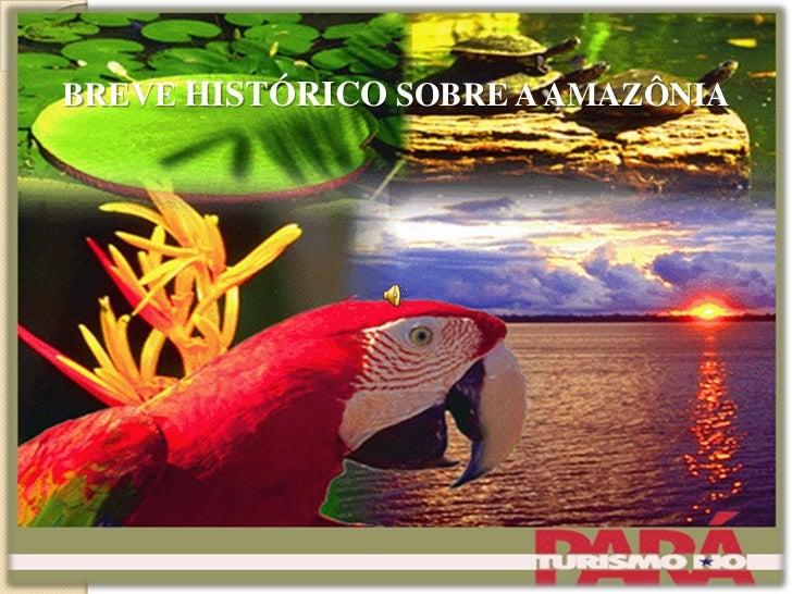 BREVE HISTÓRICO SOBRE A AMAZÔNIA