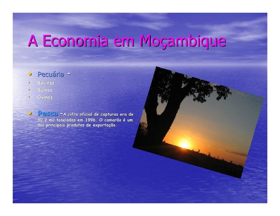 A Economia em Moçambique • Pecuária - •   Bovinos •   Suínos     Suí •   Ovinos   • Pesca -A cifra oficial de capturas era...