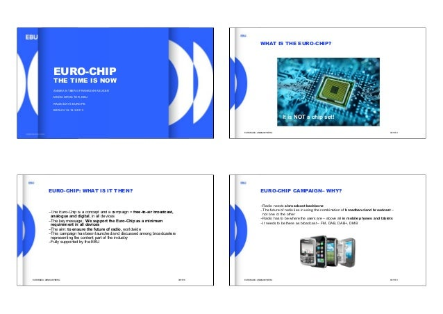 WHAT IS THE EURO-CHIP?                  EURO-CHIP                  THE TIME IS NOW                  ANNIKA NYBERG FRANKENH...