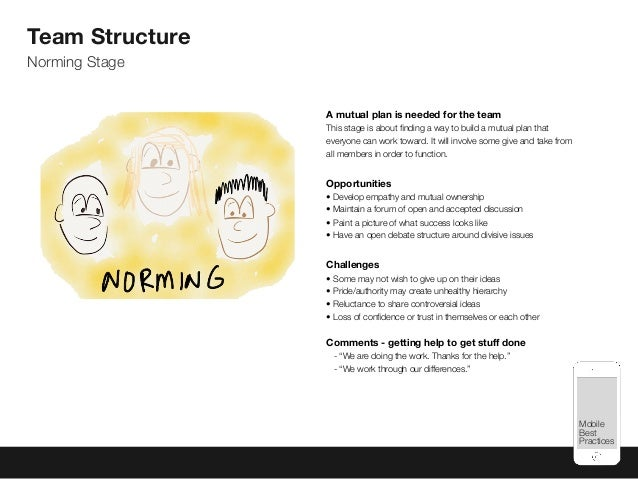Mobile Best Practices Team Structure Norming Stage A mutual plan is needed for the team This stage is about finding a way t...