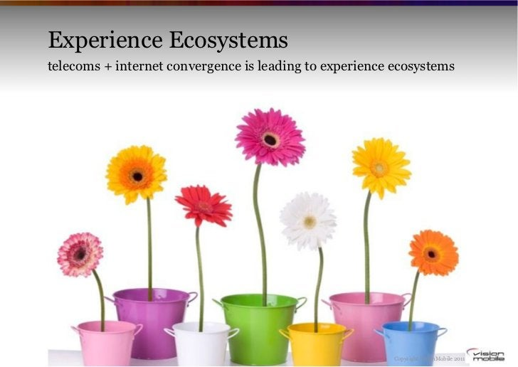 Experience Ecosystemstelecoms + internet convergence is leading to experience ecosystems                                  ...