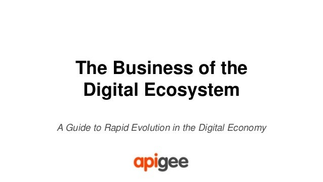 The Business of the Digital Ecosystem A Guide to Rapid Evolution in the Digital Economy
