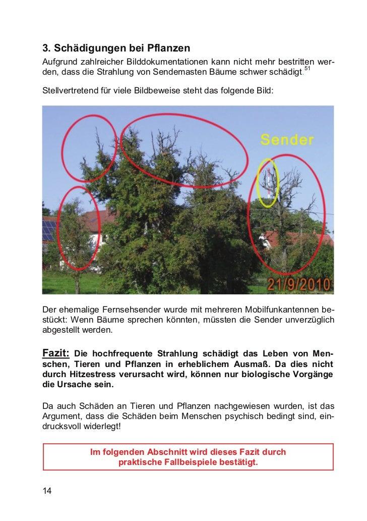 3. Schädigungen bei PflanzenAufgrund zahlreicher Bilddokumentationen kann nicht mehr bestritten wer-                      ...