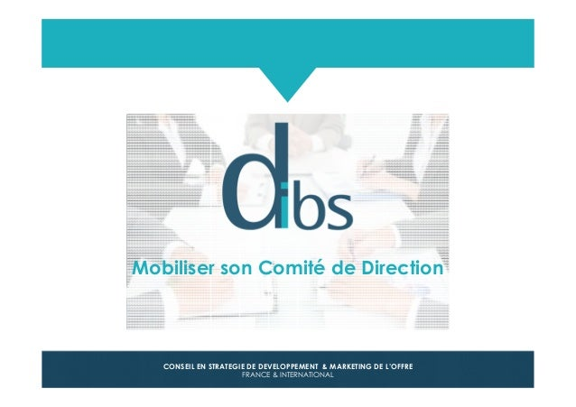 © Dibs I Confidentiel 1 CONSEIL EN STRATEGIE DE DEVELOPPEMENT & MARKETING DE L'OFFRE FRANCE & INTERNATIONAL Mobiliser son ...
